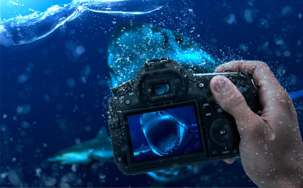 Какую подводную камеру выбрать для дайвинга и зимней рыбалки в 2018 году?